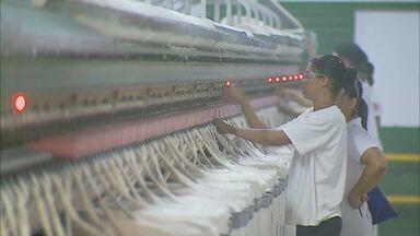 Tecidos usados nas roupas de 'Deus Salve o Rei' são confeccionados no Sul de Minas - Guaranésia é referência no ramo.
