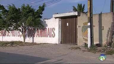 GPA funciona temporariamente de forma interna em Caruaru - Gerência de Proteção Animal está fechada desde novembro de 2017.