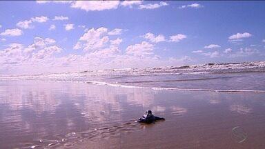 Projeto TAMAR faz celebra 35 milhões de tartarugas salvas - Programação especial ocorre neste fim de semana em quatro praias de Sergipe.