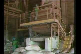 Safra de soja gera empregos na região de Santa Rosa - Muitos temporários estão sendo efetivados na Região.