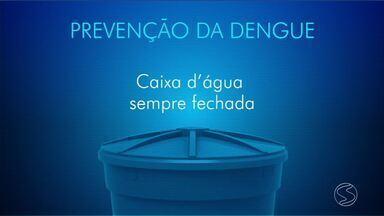 Trabalho de combate à dengue é realizado em Resende, RJ - Em 2018 já foram registrados 58 casos da doença.