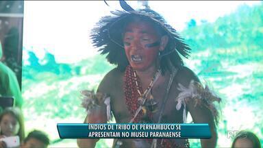 Índios se apresentam no Museu Paranaense - A tribo é de Pernambuco.