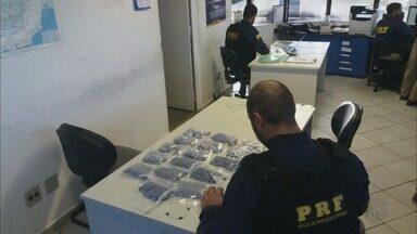 Polícia apreende 18 mil comprimidos de ecstasy, avaliados em R$ 1 milhão, na Fernão Dias - Polícia apreende 18 mil comprimidos de ecstasy, avaliados em R$ 1 milhão, na Fernão Dias
