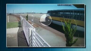 Ataque de abelhas pode ter causado acidente com duas mortes - Motociclistas bateram de frente com um ônibus escolar que seguia na direção oposta