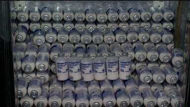 Primeira etapa de campanha contra febre aftosa começou em Pernambuco - Quem vende a vacina está animado com a procura