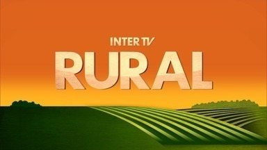Inter TV Rural - Edição de domingo, 06/05/2018 - Na íntegra - Inter TV Rural - Edição de domingo, 06/05/2018 - Na íntegra
