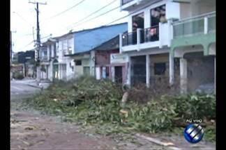 Um árvore caiu durante a madrugada no bairro do Marcoq - Felizmente nenhuma casa ou veículo foi atingido.