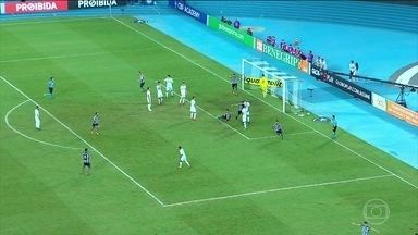 Botafogo vence o Fluminense pelo Campeonato Brasileiro - Botafogo vence o Fluminense pelo Campeonato Brasileiro