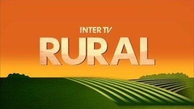 Inter TV Rural - Edição de domingo, 13/05/2018 - Na íntegra - Inter TV Rural - Edição de domingo, 13/05/2018 - Na íntegra