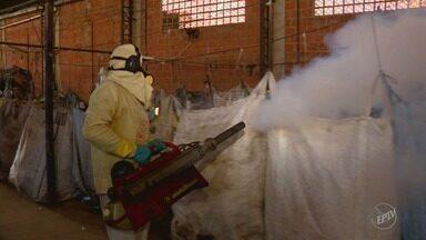 Casos de dengue aumenta mais de 10 vezes de abril para maio em Santo Antônio de Posse - Cidade tem equipes que saem 'à caça' do mosquito. A doença pode ser fatal e todos devem ajudar a não criar condições para proliferação do mosquito.