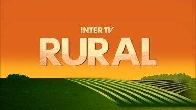 Inter TV Rural - Edição de domingo, 20/05/2018 - Na íntegra - Inter TV Rural - Edição de domingo, 20/05/2018 - Na íntegra