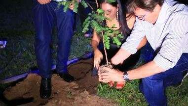 Evento celebra em Aracaju o dia do pau-brasil, árvore que deu origem ao nome do país - Evento celebra em Aracaju o dia do pau-brasil, árvore que deu origem ao nome do país. Mais de três mil mudas da espécie já foram distribuídas.