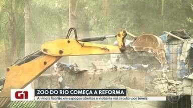 Começou hoje a reforma do Zoológico do Rio - Apesar da obra o Zoo vai funcionar de sexta a domingo e também nos feriados. Depois de pronto, o ingresso vai custar R$ 35,00