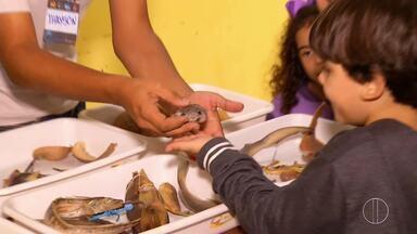 Exposição é realizada em Macaé, RJ, em comemoração ao Dia Mundial do Oceano - Assista a seguir.