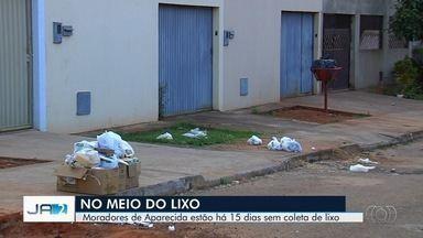Moradores reclamam de flata de coleta de lixo em Aparecida de Goiânia - Segundo eles, há 15 dias serviço não é feito em alguns bairros da cidade.