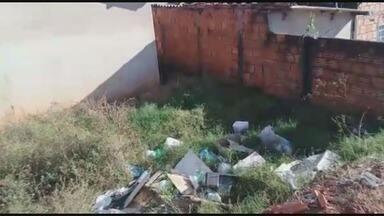 Moradores reclamam de insetos em casa abandonada em Franca, SP - Infestação de carrapatos, pulgas e escorpiões incomoda vizinhos no Parque das Esmeraldas.