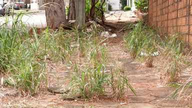 Situação das calçadas em alguns bairros de Maringá revolta moradores - Prefeitura diz que notificou 119 proprietários de imóveis sem calçadas de janeiro a maio desse ano.