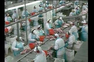 Mercado de carne suína busca recuperação - A alta da moeda americana pode ajudar na retomada do volume de negócios dos frigoríficos.