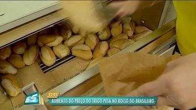 Aumento no preço do trigo afeta o valor do pão francês - Em alguns locais, o reajuste chega a 50%.