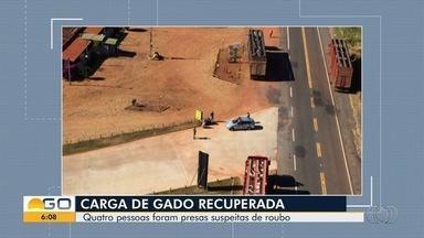 Quatro pessoas suspeitas de roubar gado no norte de Goiás - Seis carretas foram alugadas pelos suspeitos para transportar os animais.