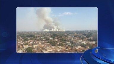 Incêndio em plantação de cana-de-açúcar incomoda moradores de Araçatuba - A fumaça provocada pelo incêndio em uma área de plantação de cana-de-açúcar incomodou os moradores de Araçatuba (SP), na tarde desta quinta-feira (5).
