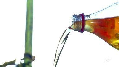 Resíduos podem virar sabão e gerar renda - Saiba mais em g1.com.br/ce