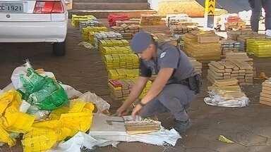 Seis toneladas de maconha apreendidas em Botucatu devem ser incineradas - As toneladas de maconha apreendidas em Botucatu devem ser incineradas. O pedido já foi feito pela Polícia Civil ao poder judiciário.