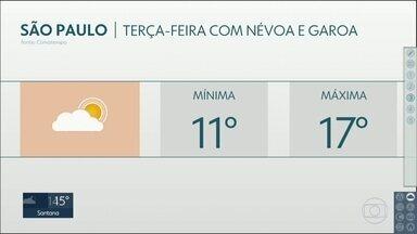 Terça-feira será com névoa e garoa na Capital e mínima de 11ºC - Máxima deve chegar a 17ºC. Temperaturas mais baixas devem durar até pelo menos quinta-feira.