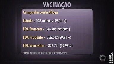 Campanha contra febre aftosa vacina mais de 756 mil animais na região - Dados foram divulgados pela Secretaria da Agricultura do Estado.