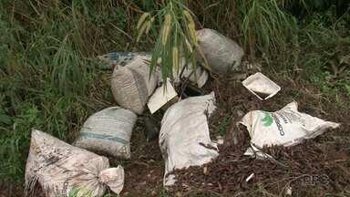Mutirão de limpeza tenta acabar com a sujeira na Estrada do Picadão - Trecho liga o bairro Novo Mundo à PR 483.