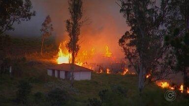 Queimada atinge área às margens de rodovia em Itapetininga - Uma área verde pegou fogo às margens da rodovia Francisco da Silva Pontes (SP-127), em Itapetininga (SP), nesta quinta-feira (26).