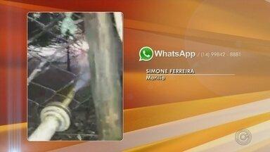 Moradores tentam apagar chamas em área de mata que ameaçam condomínio em Marília - Moradores de Marília (SP) se mobilizaram na noite deste domingo (29) para apagar um incêndio em uma área de mata.