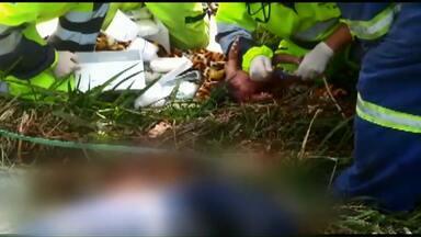 Bebê que nasceu durante acidente em rodovia tem alta do hospital - A polícia investiga as causas do acidente e tenta descobrir se o caminhão estava em alta velocidade.
