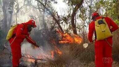 Bombeiros tentam controlar queimada na Serra do Lajeado - Bombeiros tentam controlar queimada na Serra do Lajeado