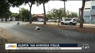 Moradores sinalizam avenida coberta com jamelões em Goiânia - Frutos deixam pista escorregadia e podem causar acidentes.