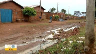 Panorama desenvolve ações para tentar eliminar o mosquito palha - Vigilância Epidemiológica visa conscientizar moradores sobre a leishmaniose.