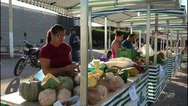 Feira da Agricultura Familiar movimenta comércio em Cedro - Saiba mais em g1.com.br/ce