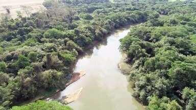 Rio Turvo é cheio de curvas e de muitas belezas no Noroeste Paulista - O Turvo é um dos principais rios de São Paulo. Suas curvas cortam o verde do Noroeste Paulista. Ele nasce no município de Monte Alto (SP) e passa por 20 municípios. Ao todo, são 267 km de extensão.