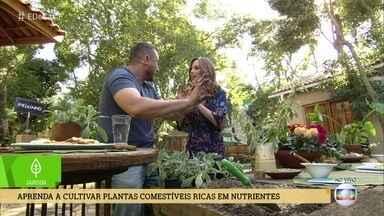 Aprenda a cultivar plantas comestíveis ricas em nutrientes - Ana Furtado conversa com Murilo Soares que dá a dica