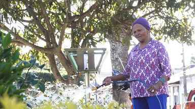 Dona Avelina mostra seu trabalho com os jardins e leva Aldri para comer bombó de banana - Dona Avelina mostra seu trabalho com os jardins e leva Aldri para comer bombó de banana