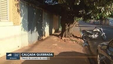 Mesmo sem vazamento de esgoto, calçada segue quebrada em Ribeirão Preto - Moradora instalou placa para pedir conserto do problema.