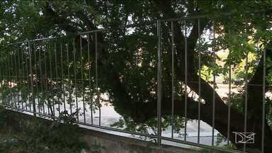 População reclama da falta de manutenção e segurança em área de lazer de São Luís - Apesar de ser a maior área para o lazer e a prática de atividades físicas no centro de São Luís, frequentadores do Parque do Bom Menino reclamam da situação do local.
