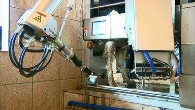 Produtores de leite usam robô na ordenha em Lagoa da Prata - Fazendeiros investem em tecnologia para modernizar a produção.