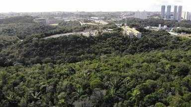 Bahia Rural vista a Reserva de Biosfera de Mata Alântico da Ucsal, em Salvador - O local é utilizado também como abrigo para plantas que estão sofrendo com a extinção.