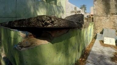 Cemitério da Consolação sofre com mato alto, buracos e vandalismo em Sorocaba - O cemitério da Consolação, em Sorocaba (SP), sofre com mato alto, buracos e ataques de vandalismo.