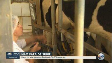 Preço do leite acumula alta de 50,2% neste ano - Preço subiu pelo sétimo mês seguido. No mesmo período em 2017, preço médio para o produtor registrava queda de 4,5%.