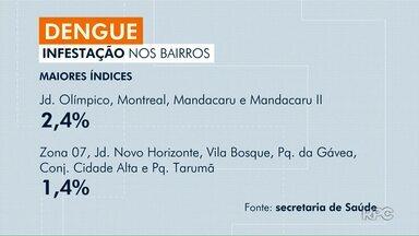 Cai o índice de infestação da dengue em Maringá - O índice na cidade ficou em 0,8%