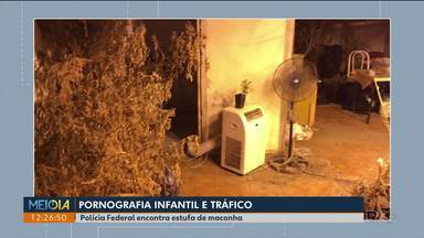 Homem é preso suspeito de armazenar e distribuir pornografia infantil - Os policiais também encontraram uma estufa para plantação de maconha.