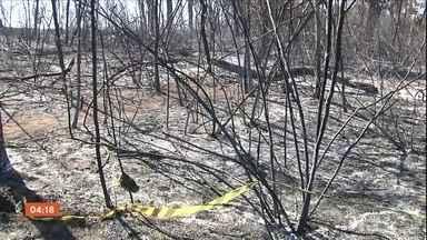 Incêndio em canavial em GO deixa dois mortos - Incidente foi na cidade de Itaberaí. Eles realizavam um a queima controlada em uma plantação quando foram atingidos pelas chamas.