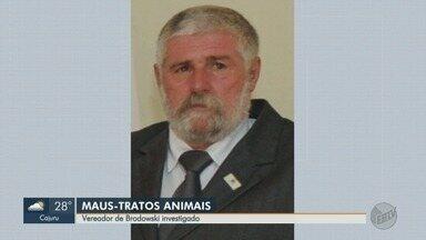 Vereador é suspeito de mutilar porcos em Brodowski, SP - Os vizinhos encontraram os animais feridos e denunciaram o parlamentar à polícia.